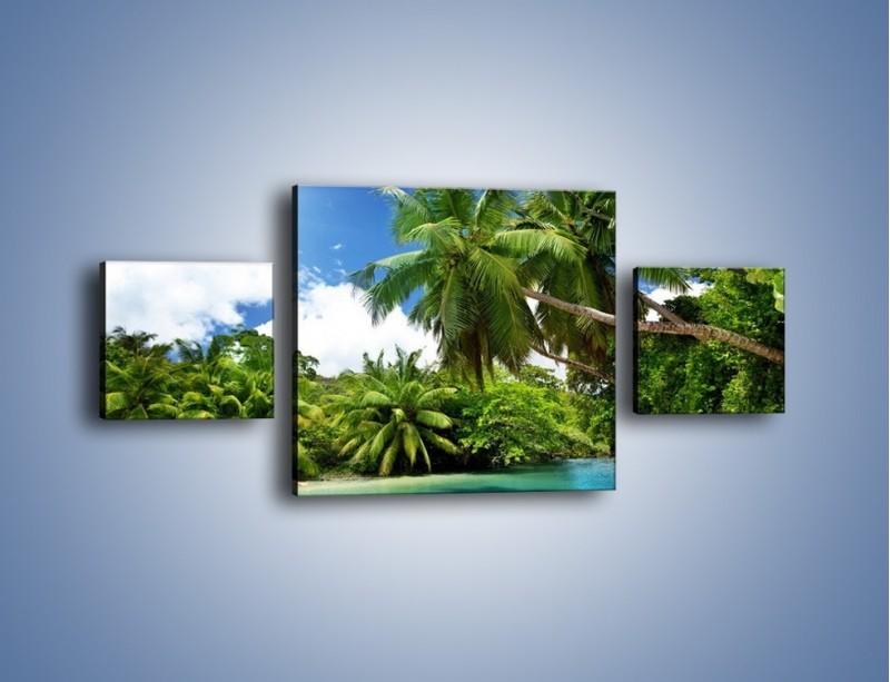 Obraz na płótnie – Rozłożone palmy i woda – trzyczęściowy KN1168AW4