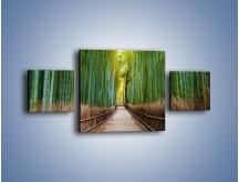 Obraz na płótnie – Bambusowy las – trzyczęściowy KN1187AW4