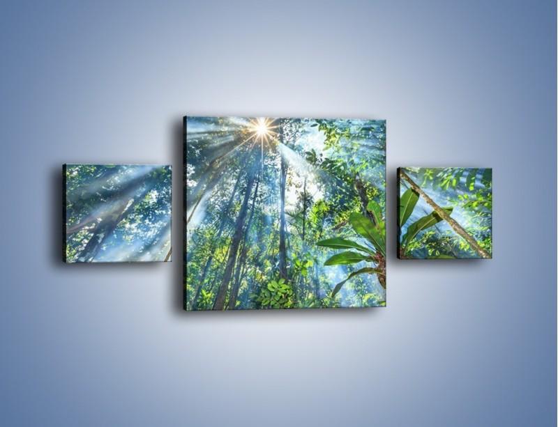Obraz na płótnie – Dyzio marzyciel i drzewa – trzyczęściowy KN1189AW4