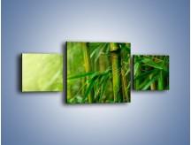 Obraz na płótnie – Bambus w roli głównej – trzyczęściowy KN1202AW4