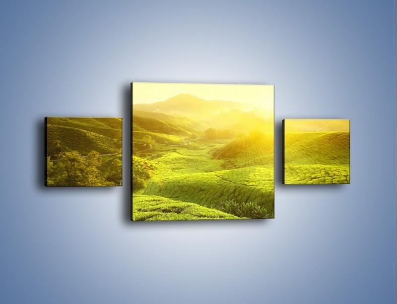 Obraz na płótnie – Zieleń w dolinie – trzyczęściowy KN1204AW4