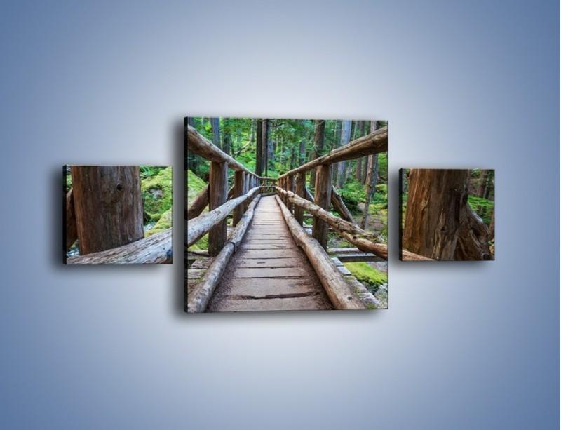 Obraz na płótnie – Mostek z drewnianych bali – trzyczęściowy KN1207AW4