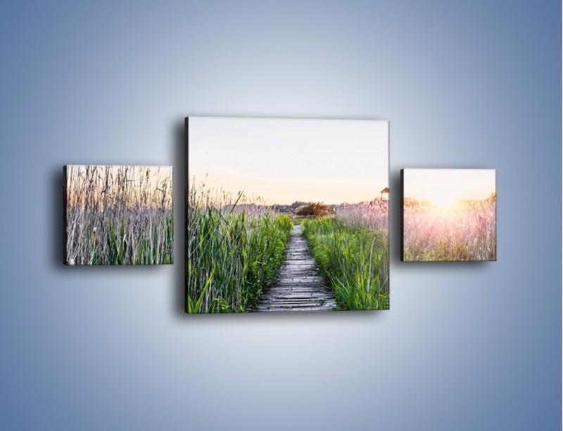 Obraz na płótnie – Kładka wśród mokradeł – trzyczęściowy KN1248AW4