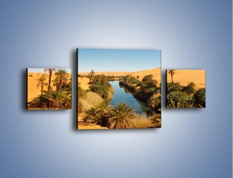 Obraz na płótnie – Woda woda na pustyni – trzyczęściowy KN1294AW4
