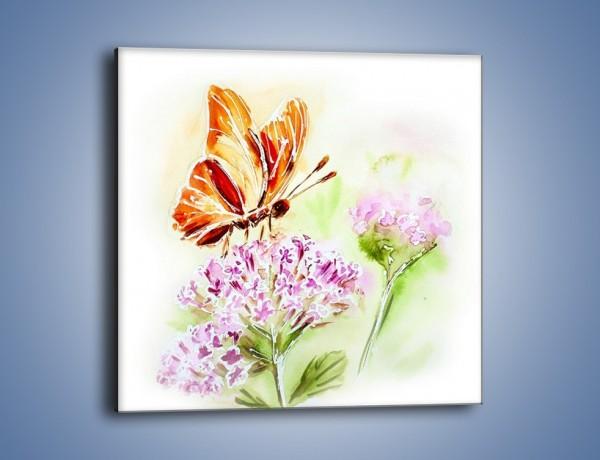 Obraz na płótnie – Kwiat z motylem – jednoczęściowy kwadratowy GR625
