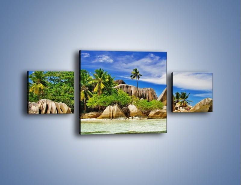 Obraz na płótnie – Tropiki i ich wysokości – trzyczęściowy KN1306AW4