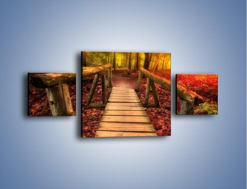 Obraz na płótnie – Krótkie przejście przez las – trzyczęściowy KN1330AW4
