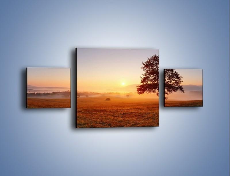 Obraz na płótnie – Krajobraz utopiony we mgle – trzyczęściowy KN1331AW4