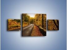 Obraz na płótnie – Asfaltową droga przez las – trzyczęściowy KN169W4
