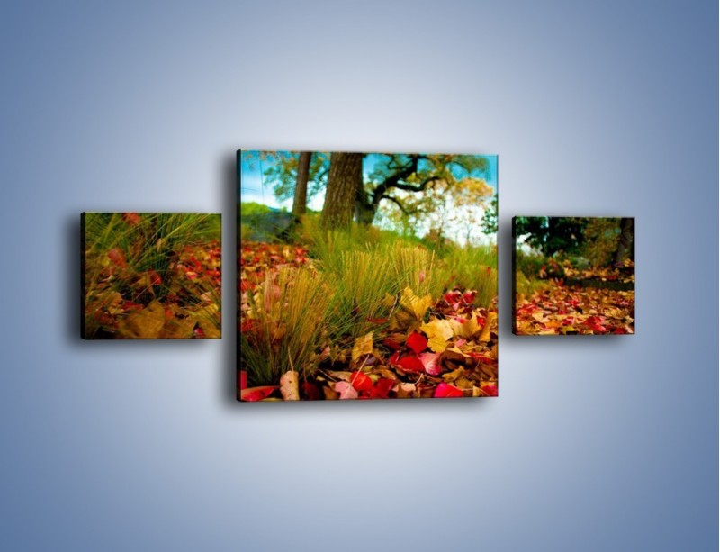 Obraz na płótnie – Droga usłana liśćmi – trzyczęściowy KN172W4