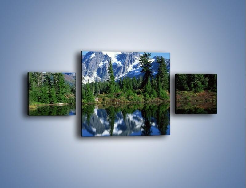 Obraz na płótnie – Zimowe pozostałości w górach – trzyczęściowy KN225W4