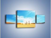 Obraz na płótnie – Błękit nieba i słońce w ziemi – trzyczęściowy KN331W4
