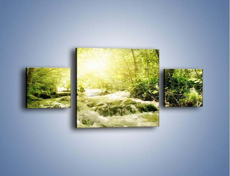 Obraz na płótnie – Wzburzony potok leśny – trzyczęściowy KN508W4