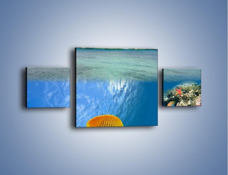 Obraz na płótnie – Podwodny świat na wyspie – trzyczęściowy KN586W4
