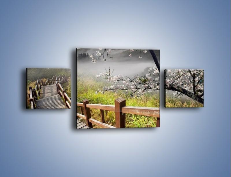 Obraz na płótnie – Drzewo wiśni i kręte schody – trzyczęściowy KN698W4