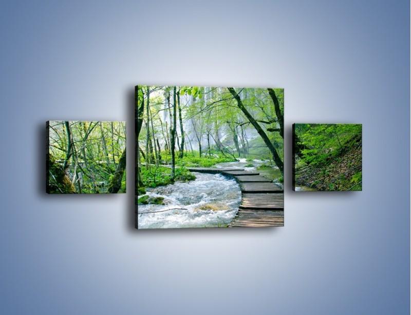 Obraz na płótnie – Drewniana kładką przez potok – trzyczęściowy KN720W4