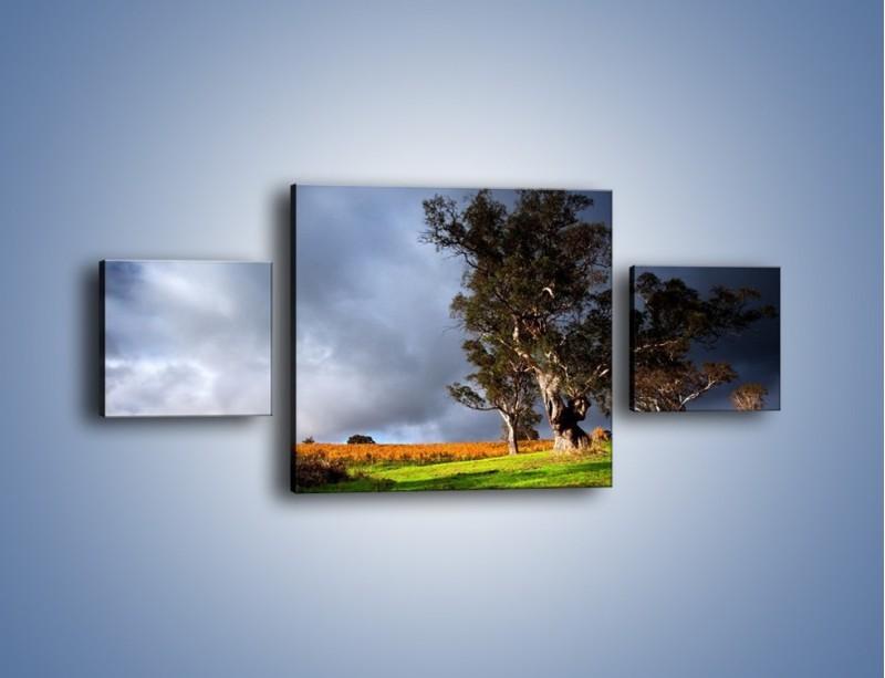 Obraz na płótnie – Burzowe chmury nad polaną – trzyczęściowy KN748W4