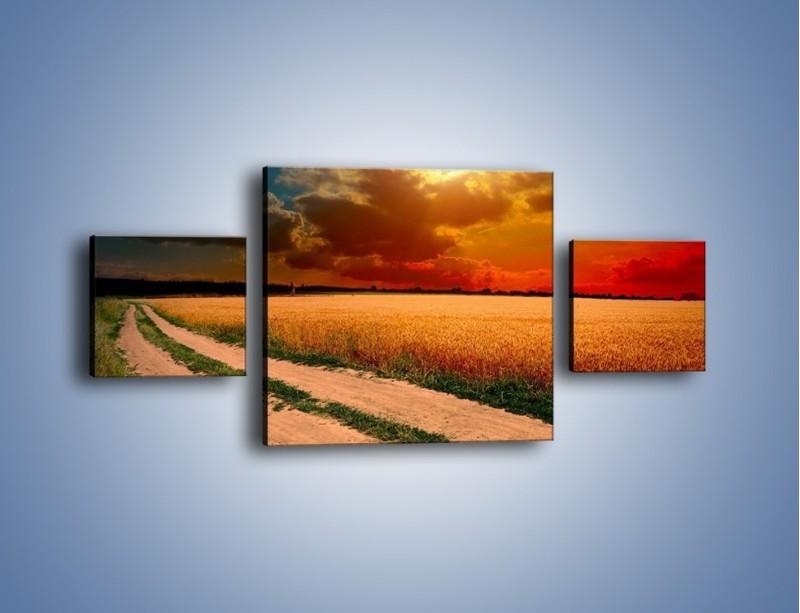 Obraz na płótnie – Zbożowa polana i jej cały urok – trzyczęściowy KN776W4