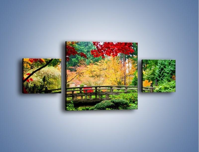 Obraz na płótnie – Mostem do roślinnego raju – trzyczęściowy KN782W4