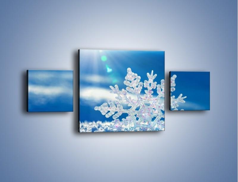 Obraz na płótnie – Diamentowa śnieżynka – trzyczęściowy KN808W4