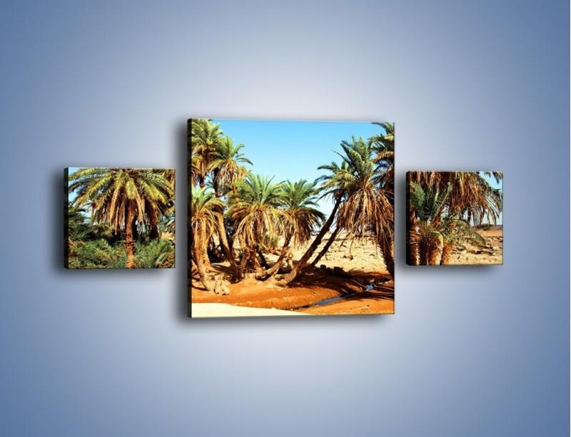 Obraz na płótnie – Palmowa rodzina w komplecie – trzyczęściowy KN809W4
