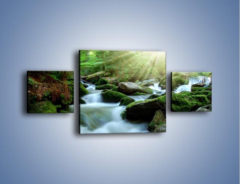 Obraz na płótnie – Silny potok w środku lasu – trzyczęściowy KN861W4