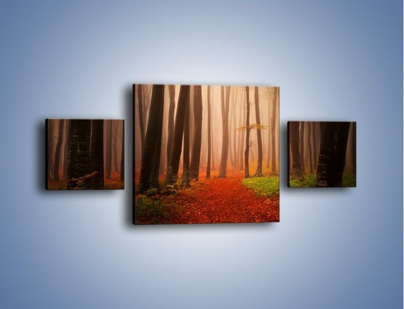Obraz na płótnie – Las pełen tajemnic – trzyczęściowy KN909W4