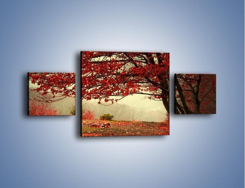 Obraz na płótnie – Spadające liście z drzew – trzyczęściowy KN910W4