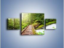 Obraz na płótnie – Bezpieczna droga przez las – trzyczęściowy KN922W4