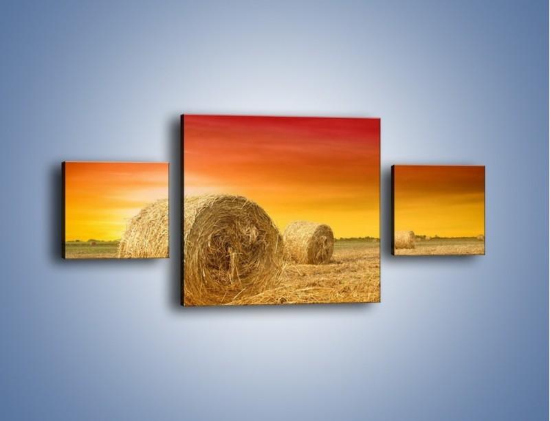 Obraz na płótnie – Koła z siana – trzyczęściowy KN958W4