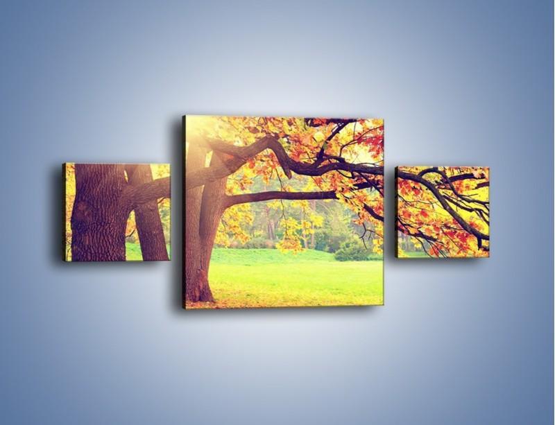 Obraz na płótnie – Jesienią w parku też jest pięknie – trzyczęściowy KN967W4