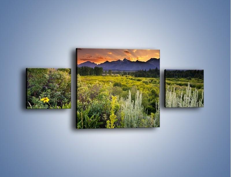 Obraz na płótnie – Wieczorny spokój na polanie – trzyczęściowy KN987W4