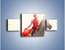 Obraz na płótnie – Damska przejażdżka w makach – trzyczęściowy L332W4