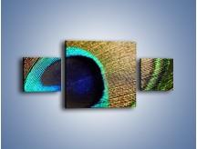 Obraz na płótnie – Cudowne pawie oko – trzyczęściowy O048W4