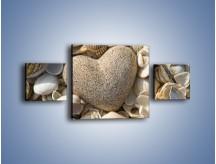 Obraz na płótnie – Miłość do muszli i morza – trzyczęściowy O132W4