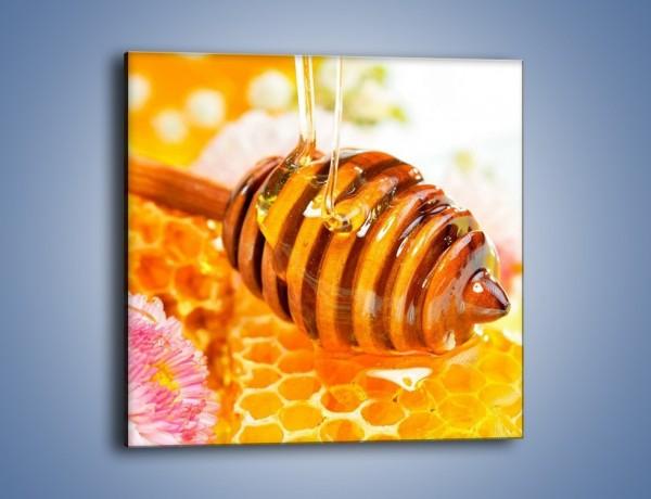 Obraz na płótnie – Zdrowy miód – jednoczęściowy kwadratowy JN012