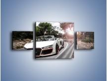 Obraz na płótnie – Audi R8 V10 Spyder – trzyczęściowy TM209W4