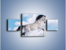 Obraz na płótnie – Białe obłoki i koń – trzyczęściowy Z019W4