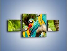 Obraz na płótnie – Kolorowe papugi w szeregu – trzyczęściowy Z029W4