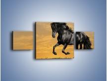 Obraz na płótnie – Bieg z koniem po polanie – trzyczęściowy Z057W4