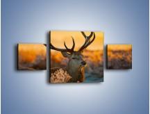 Obraz na płótnie – Ciężkie poroże jelenia – trzyczęściowy Z165W4