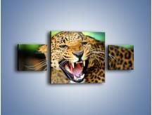 Obraz na płótnie – Jaguar z pazurem – trzyczęściowy Z184W4