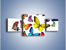 Obraz na płótnie – Kolorowo wśród motyli – trzyczęściowy Z236W4