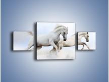 Obraz na płótnie – Białe konie i biały śnieg – trzyczęściowy Z239W4
