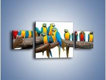 Obraz na płótnie – Kolorowe stado papug – trzyczęściowy Z326W4