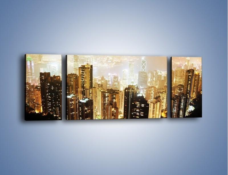 Obraz na płótnie – Miasto widziane z góry – trzyczęściowy AM007W5