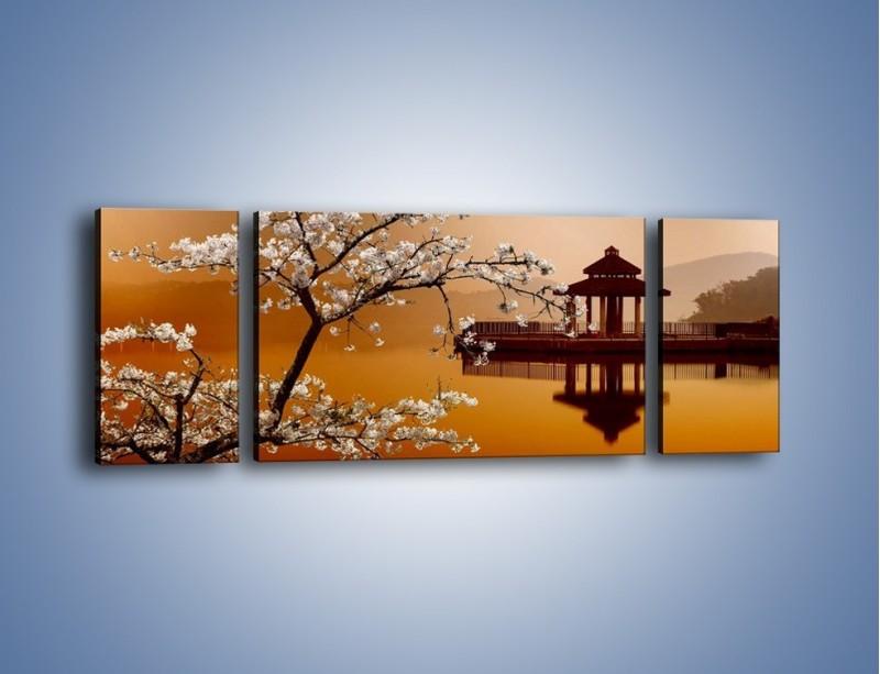 Obraz na płótnie – Kwiaty na tle Sun Moon Lake – trzyczęściowy AM301W5