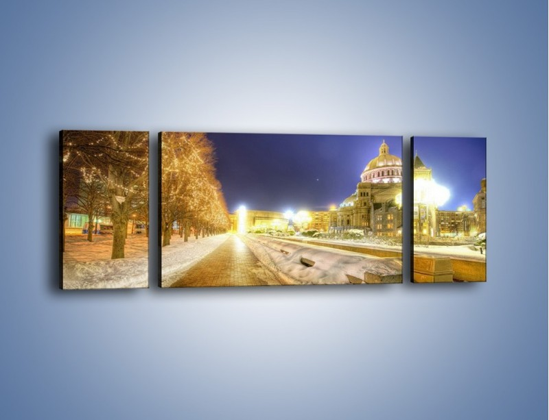 Obraz na płótnie – Zaśnieżona aleja bostońska – trzyczęściowy AM317W5