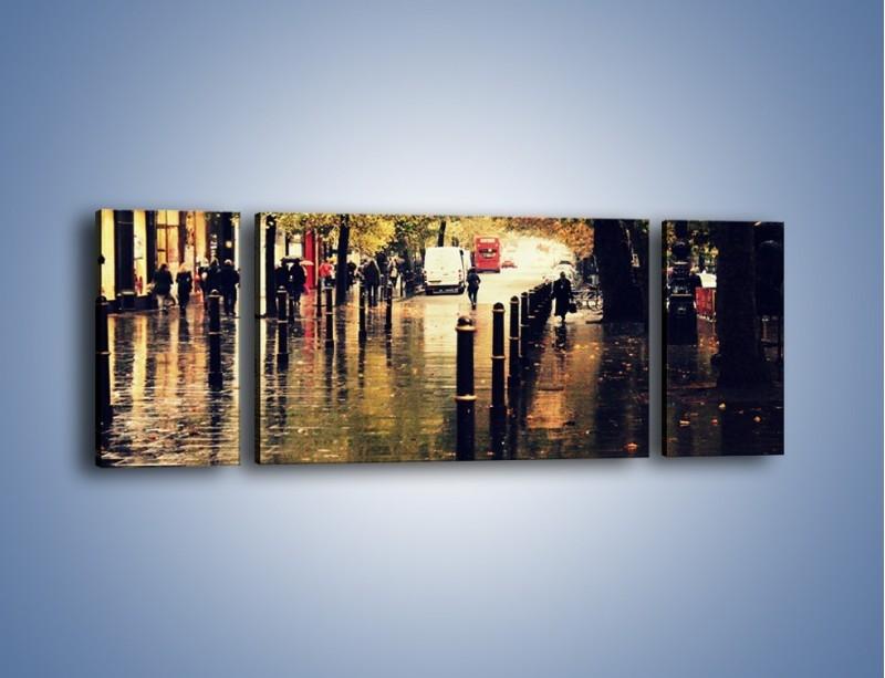 Obraz na płótnie – Deszczowa jesień w Moskwie – trzyczęściowy AM383W5