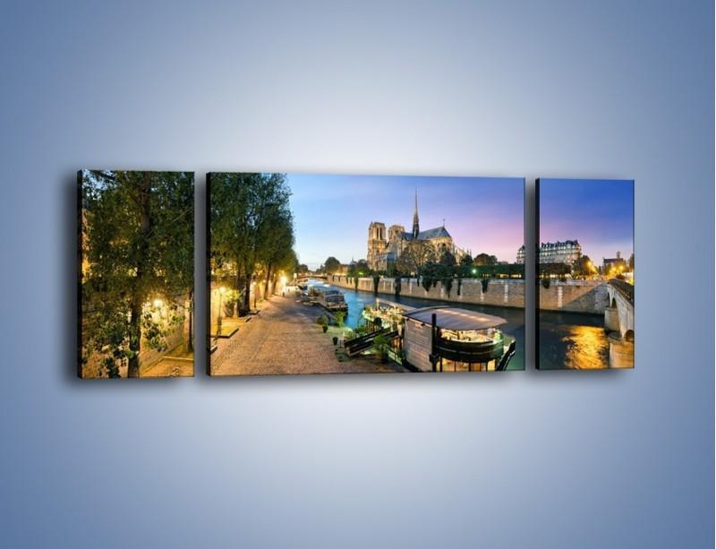 Obraz na płótnie – Katedra Notre Dame – trzyczęściowy AM405W5